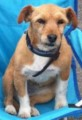 TODD MISSING 3 YEARS from PR4 (North West) - click to find out more