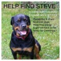 STEVE MISSING A YEAR  from LE10 (Central) - click to find out more