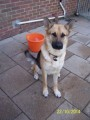 ROXY SIGHTED from CO4 (South East) - click to find out more