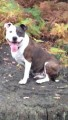 LILY from DA6 (South East) - click to find out more