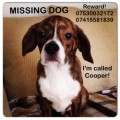 COOPER from M33 (North West) - click to find out more