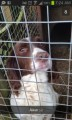 BEN from LN8 (East Anglia) - click to find out more