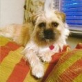PIP from EN3 (South East) - click to find out more