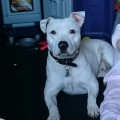 MIA from DN12 (North East) - click to find out more