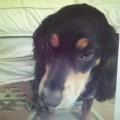 HERO from CB3 (East Anglia) - click to find out more
