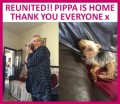 PIPPA from BB5 (North West) - click to find out more