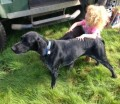 CASPER from TR9 (South West) - click to find out more